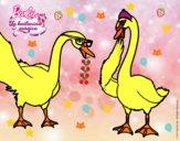 El baile de los cisnes