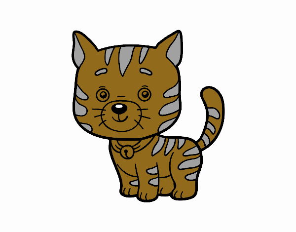 Dibujo de un gato dom stico pintado por en el - Dibujos de gatos pintados ...
