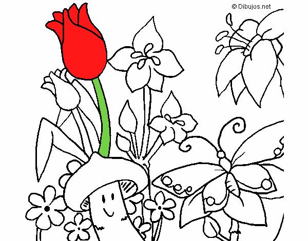Dibujos Para Colorear De Flora
