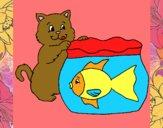 Gato y pez