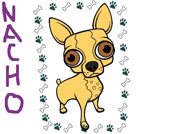Dibujo De Chihuahua: Dibujo De Chihuahua Pintado Por En Dibujos.net El Día 04