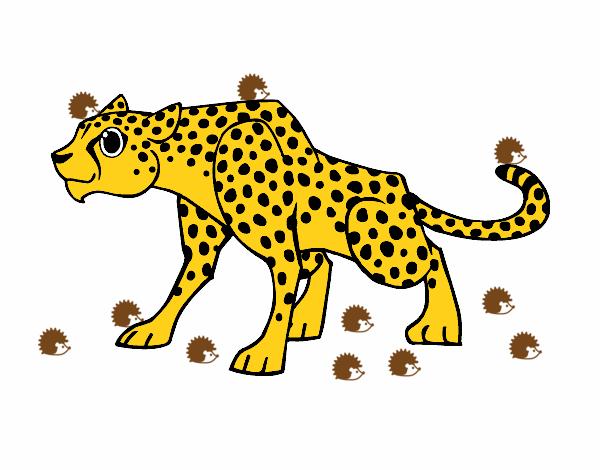Dibujo Leopardo Para Colorear E Imprimir: Dibujo De Un Leopardo Pintado Por En Dibujos.net El Día 10