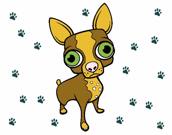 Dibujo De Chihuahua: Dibujo De Chihuahua Pintado Por En Dibujos.net El Día 21