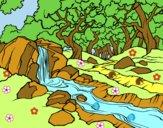 Paisaje de bosque con un río