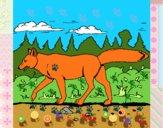 Dibujo Coyote pintado por MARTICANTI