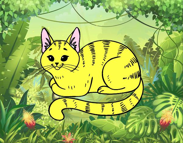 Dibujos De Animales Adorables Para Colorear: Dibujo De El Gato Mas Adorable Pintado Por En Dibujos.net
