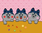 Dibujo 3 perritos pintado por sheyla9