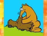 Dibujo Oso hormiguero comiendo pintado por meibol