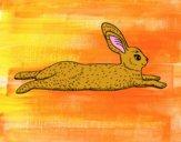 Dibujo Una liebre pintado por meibol