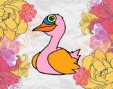Un pato