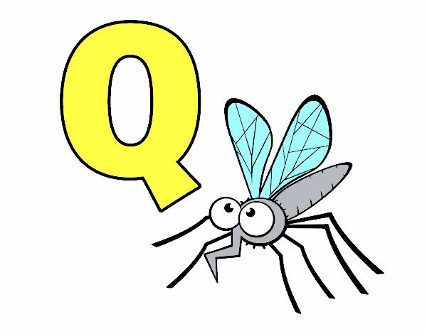 Q de Mosquito