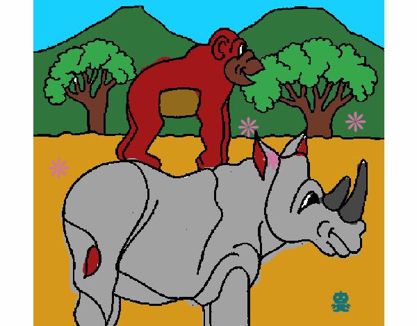rino con gorila