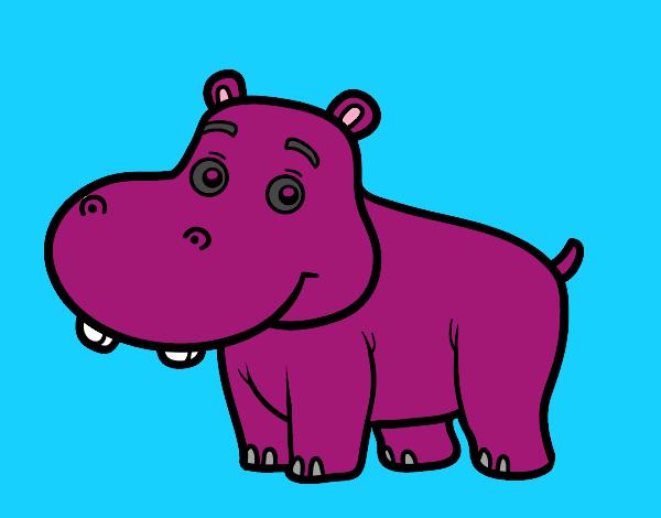 Hipopótamo joven