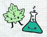 Asignatura de ciencias