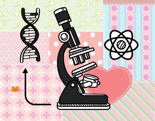Dibujo De Biología Pintado Por En Dibujos.net El Día 16