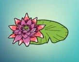 Dibujo Una flor de loto pintado por gogy