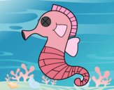 Caballito de mar bebé