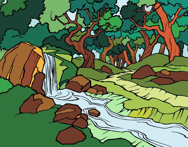 Dibujo Paisaje de bosque con un río pintado por Ytap