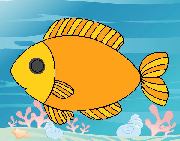 Dibujo de el pez dorado pintado por en Dibujosnet el da 200517