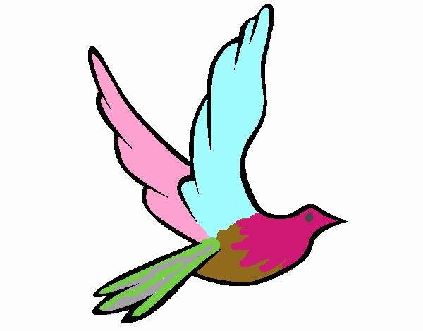 Dibujo De Paz En Colores Pintado Por En Dibujos.net El
