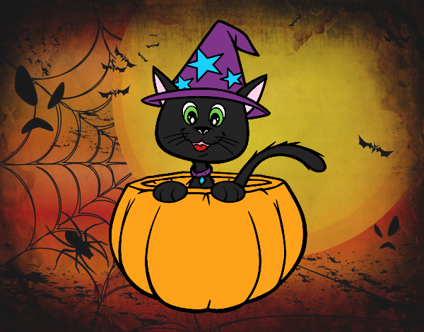 gatito halloween