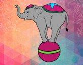 Dibujo Elefante equilibrista pintado por brichuli