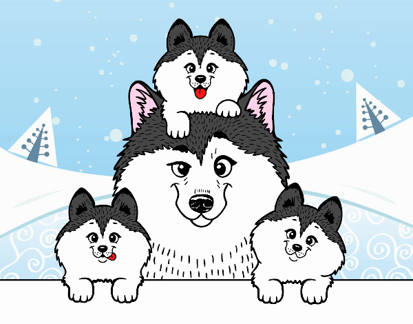Dibujo de Familia Husky pintado por en Dibujos.net el día 24-06-17 a ...