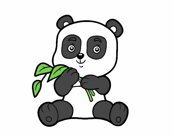 Dibujo Un oso panda pintado por fer046
