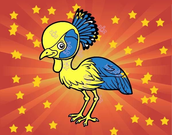 Grulla coronada cuelligris