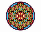 Mandala flor de vida