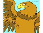 Águila Imperial Romana