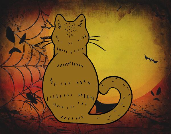 Gato de espaldas