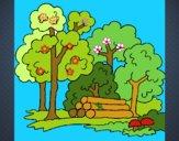 Dibujo Bosque 2 pintado por bandin