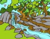 Dibujo Paisaje de bosque con un río pintado por bandin