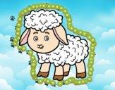 Dibujo Una ovejita pintado por Joddy