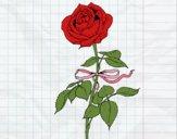 Dibujo Una rosa pintado por Joddy
