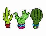 Dibujo 3 mini cactus pintado por yuridia31