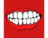 Boca y dientes