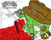 Donatello de Ninja Turtles