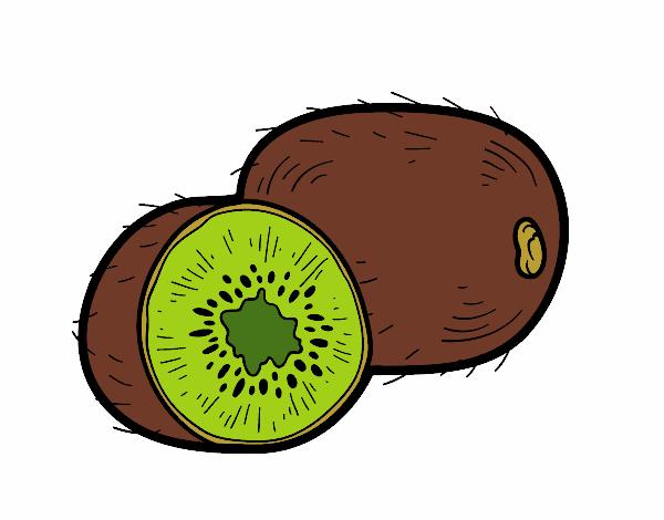Dibujo El kiwi pintado por albabm24