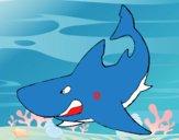 Tiburón enfadado