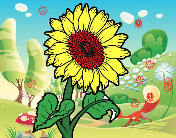 flor en naturaleza