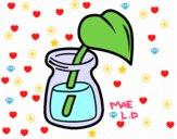 Hoja en un vaso