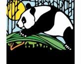 Oso panda comiendo