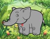 Un elefantito