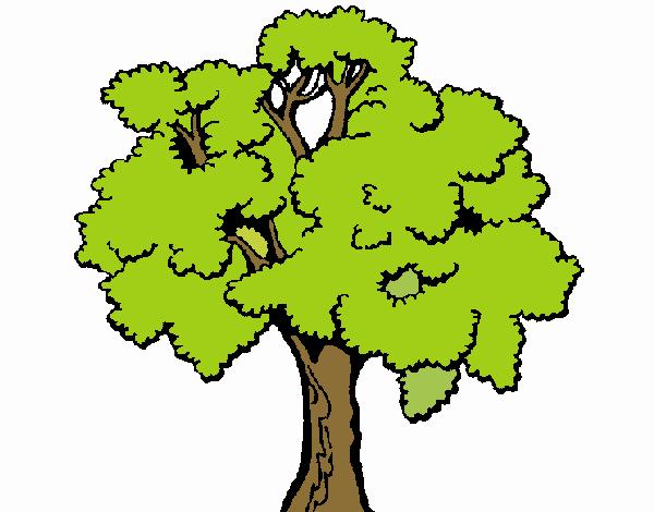 Dibujo Árbol 1 pintado por Maia8a