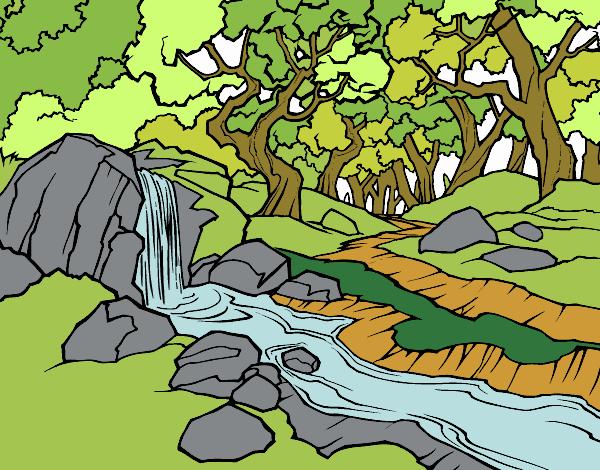 Dibujo Paisaje de bosque con un río pintado por Maia8a