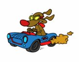Perro de carreras