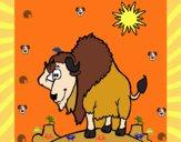 Bisonte en el desierto