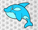 Orca joven
